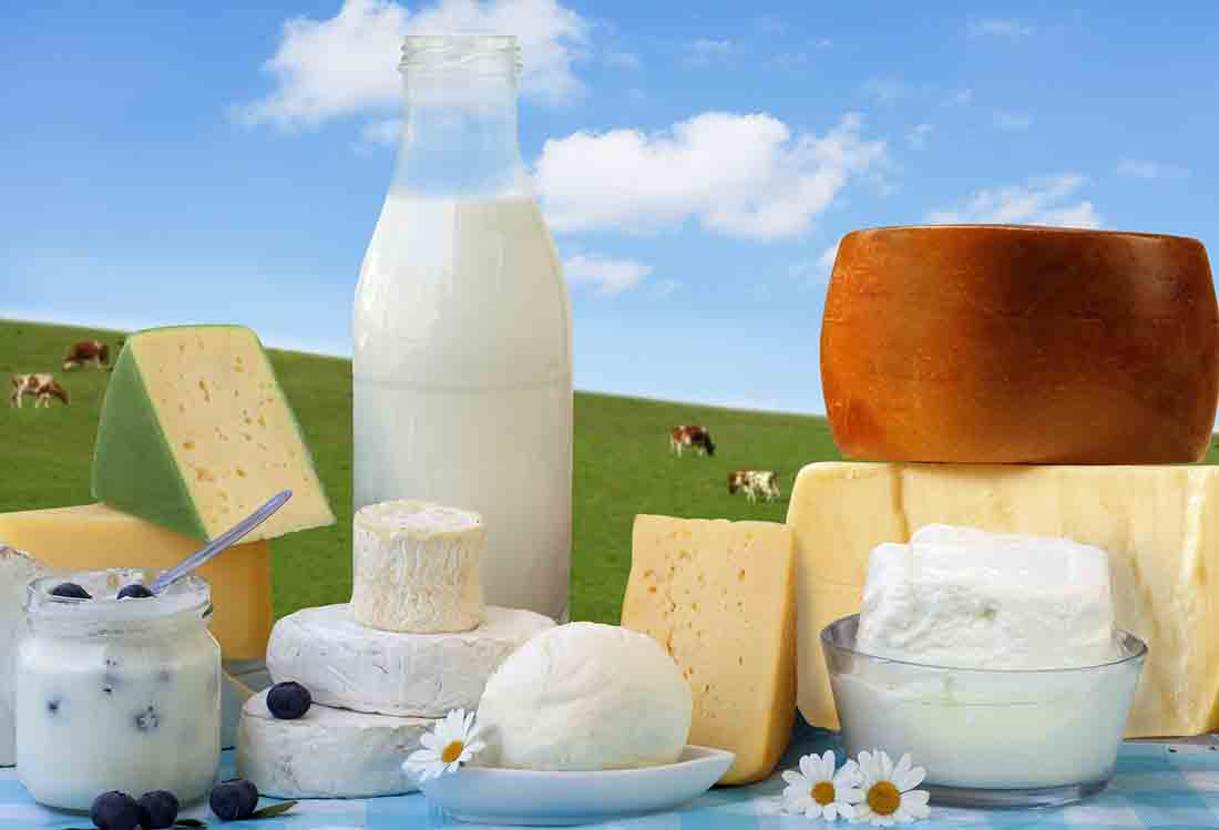 Foods for weight gain - dairy products