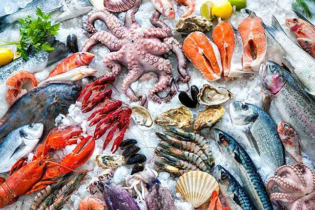 Picture of seafood - lots of fish and shellfish