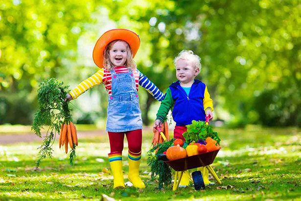 Picture of children collecting some low carb vegetables from a field