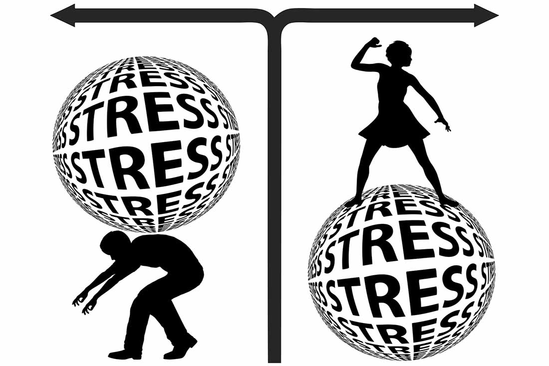 Stress and the fight or flight response