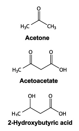 Picture of Ketone Bodies - Health Benefits of Ketogenesis and Ketones