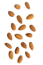 Picture of Almonds: A Nut That is High in Calcium