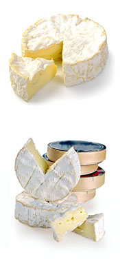 Picture of Camembert Cheese,