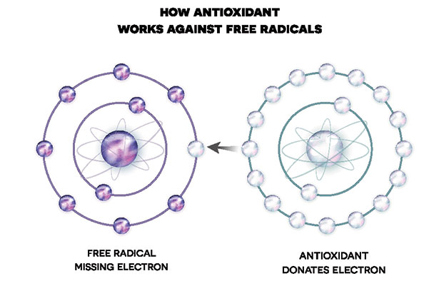 How Antioxidants Protect Health and Fight Free Radicals