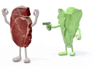 Picture of lettuce holding a gun to beef - meat vs vegan diet theme.