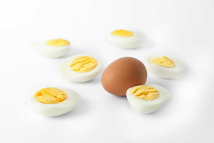 Hard Boiled Eggs Are An Excellent Source of Protein