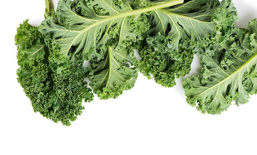 A Pack of Kale Leaves Tied Together.