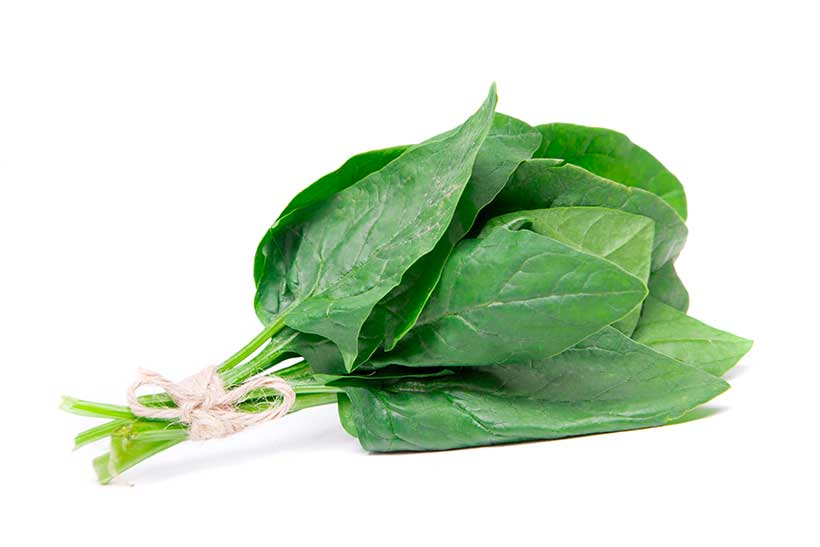 Some Spinach Leaves Bound Together.