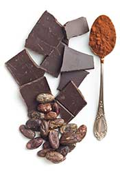 Picture Showing Foods High in Polyphenols Like Cocoa and Cinnamon.