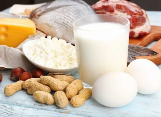 Table Showing Foods Suitable For High Protein, Low Carb Diet.
