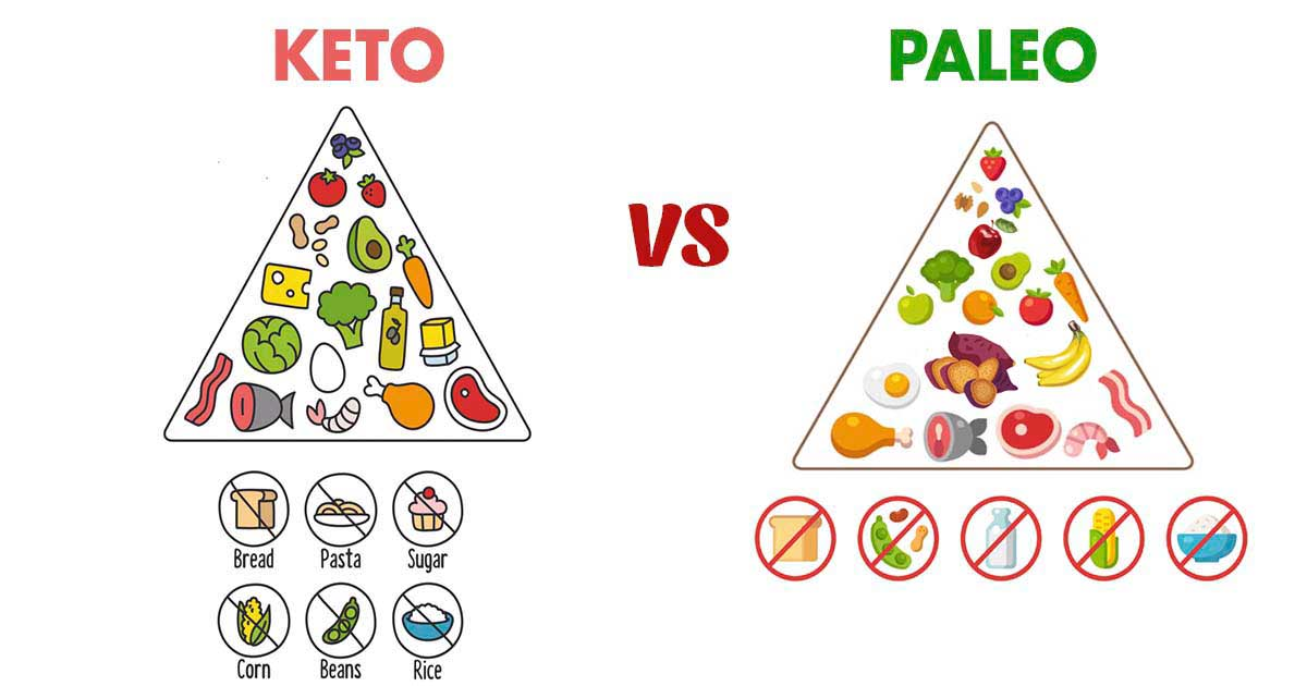 Keto vs Paleo: How Do These Popular Diets Compare?